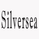シルバーシークルーズ 映画ストリーミング無料サービスを開始